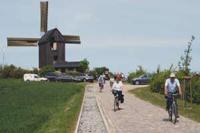 Weg zur Mühle